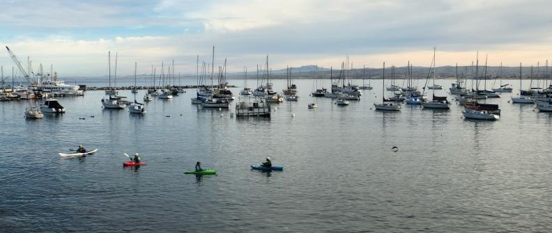 Anamorphic photo of Monterey Harbor with kayakers