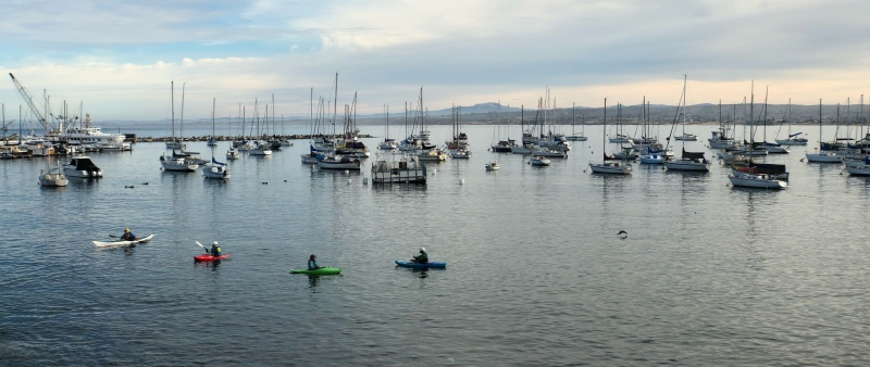 Anamorphic photo of Monterey Harbor with kayakers