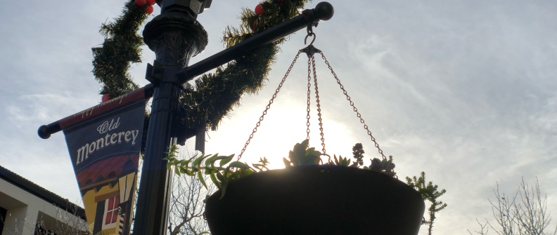 Anamorphic photo of a Monterey sidewalk light pole with Christmas decorations, backlit